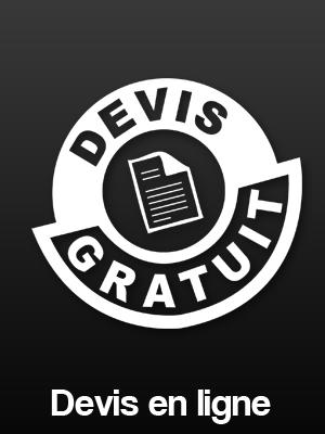 Devis gratuit en ligne entreprise de nettoyage Leven Propreté à Nantes