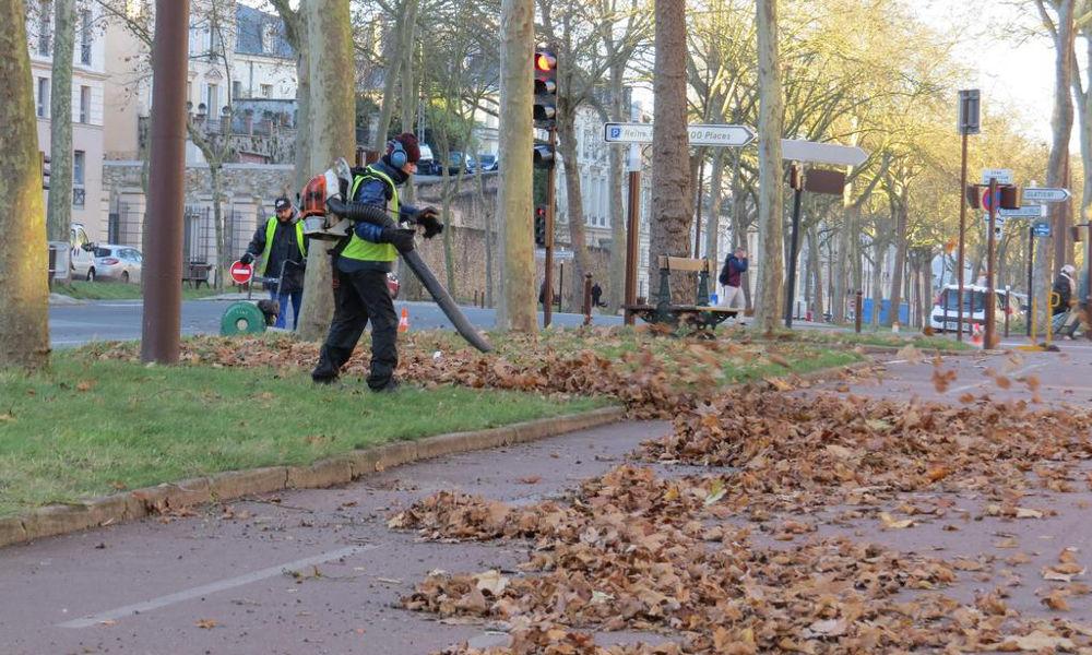 Entretien des espaces verts à Nantes 44